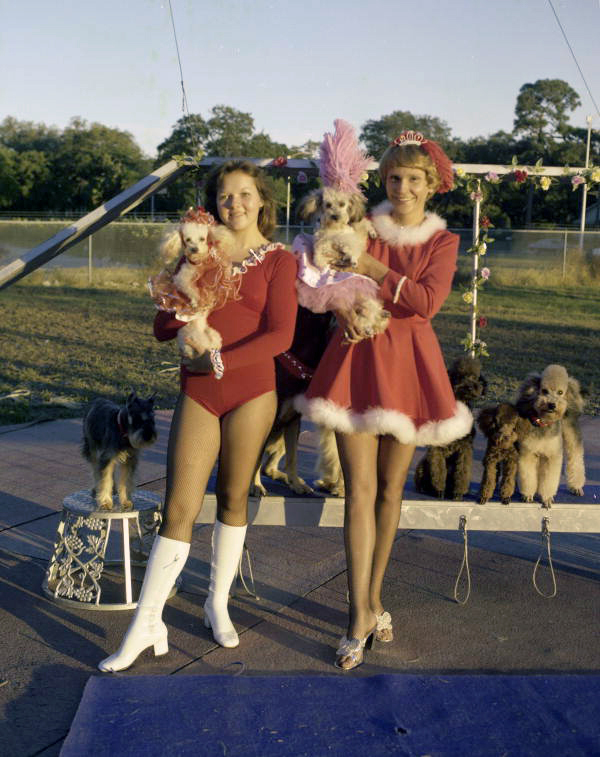 Student trainers holding performing dogs from the Sarasota High School Sailor Circus.