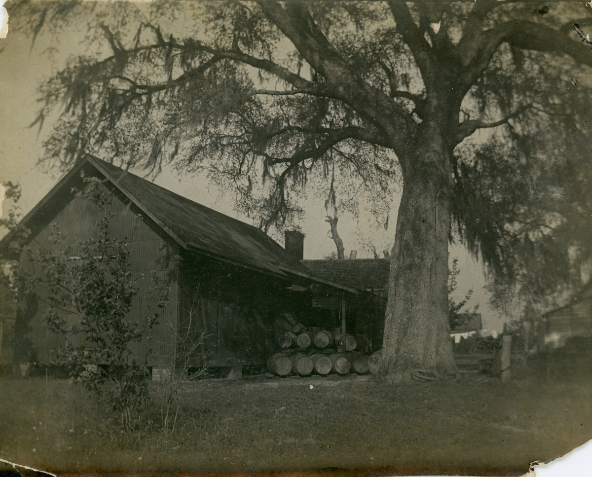 Warehouse at San Luis Vineyards in Tallahassee.
