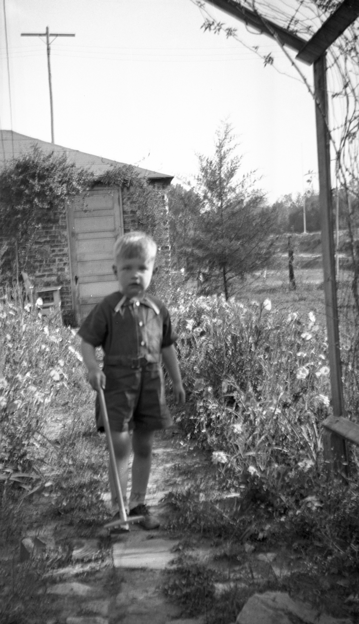 Warren Dixon in the garden at his grandmother's house in Tallahassee.