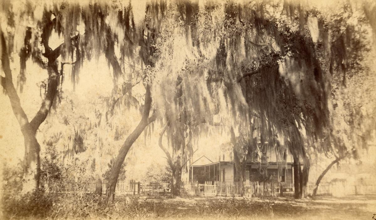 Hotchkin's place - Welaka, Florida.