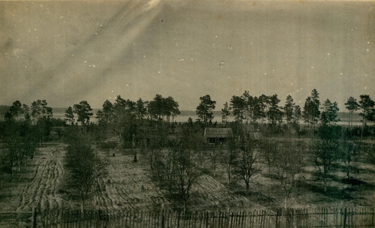 Jarvis family grove next to Lake Broward in Pomona.