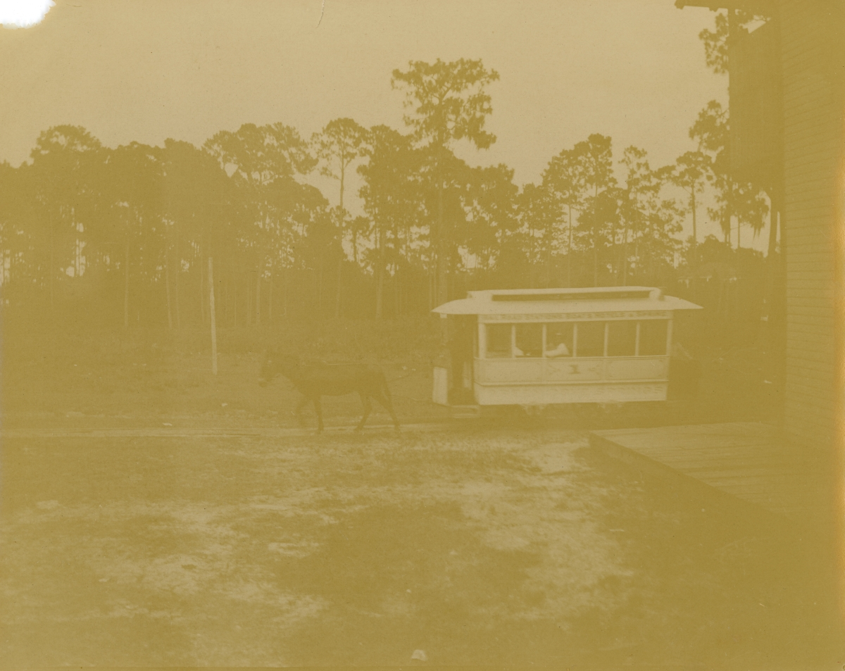 Horse-drawn tram with passengers at Green Cove Springs.