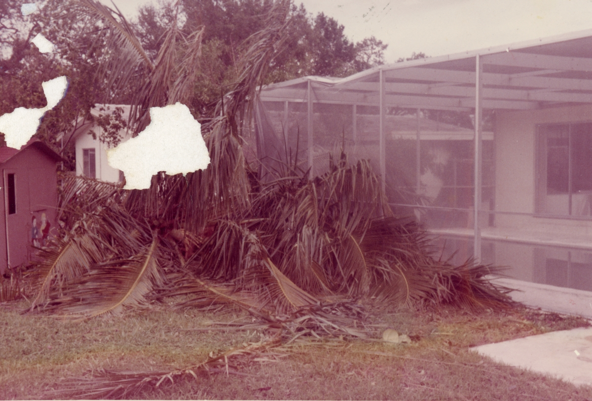 "Damage at the home of Dorothy ""Dot"" Page in Ft. Lauderdale following Hurricane Cleo."