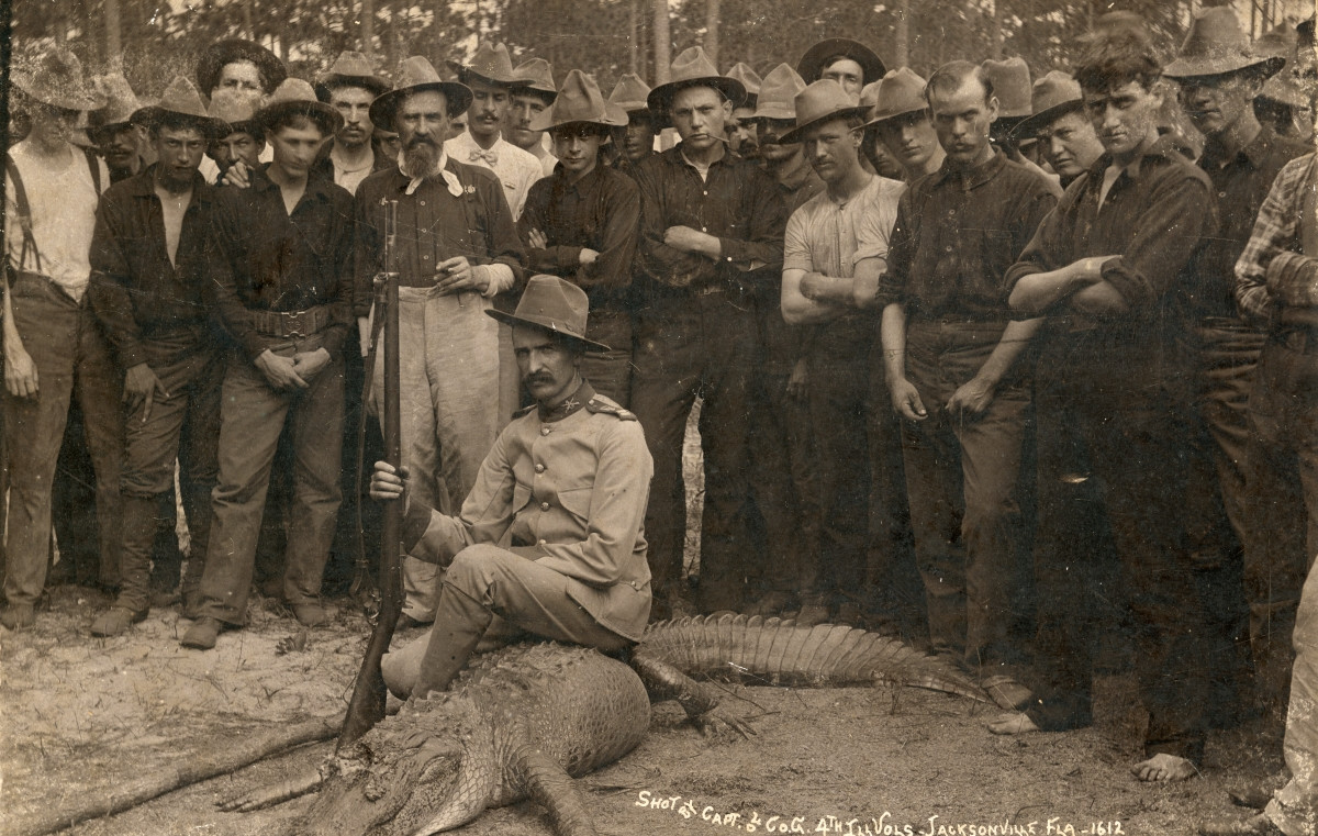 Alligator shot by the captain of Company G, 4th Illinois Volunteers in Jacksonville.