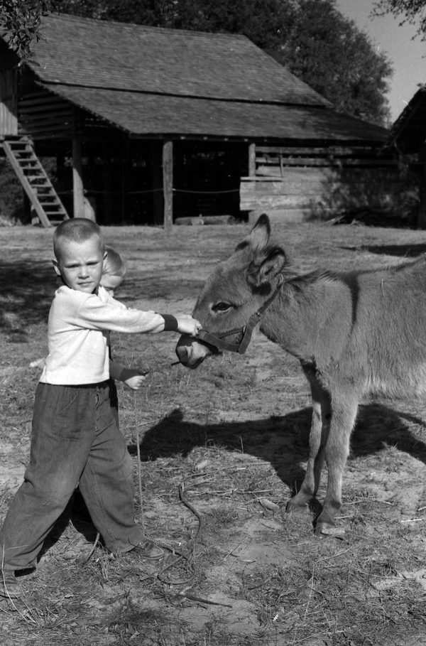 Children with a donkey in Tallahassee.