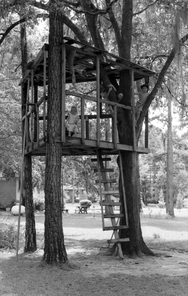 Kids playing in a tree house in Tallahassee.