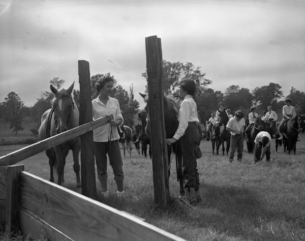 Women with horses in Tallahassee.
