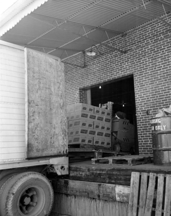 Boxes being loaded at the Lykes Corp. cannery in Tampa, Florida.