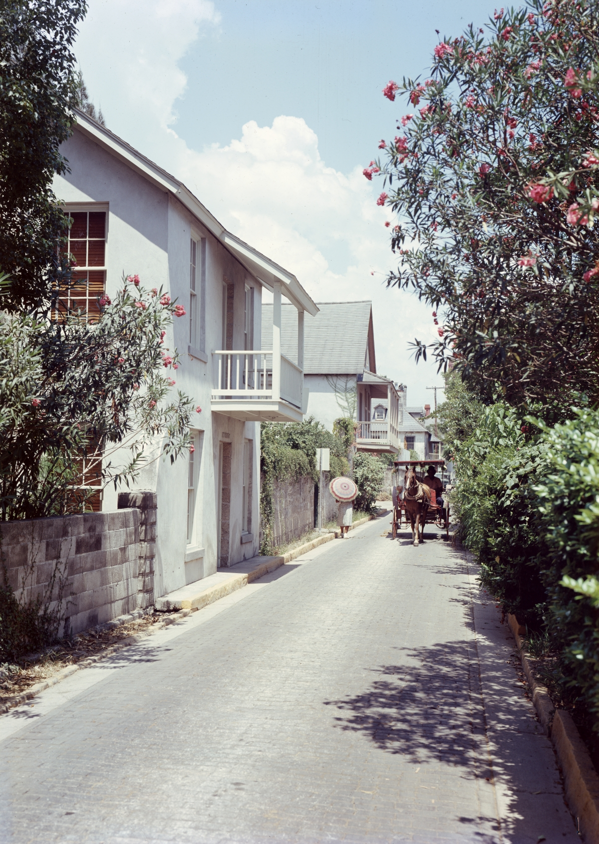 Tourist carriage riding down Aviles Street in St. Augustine.