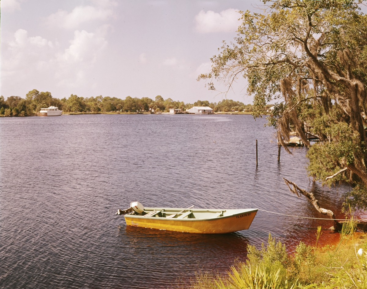 Scenic view of the Steinhatchee River in Taylor County.