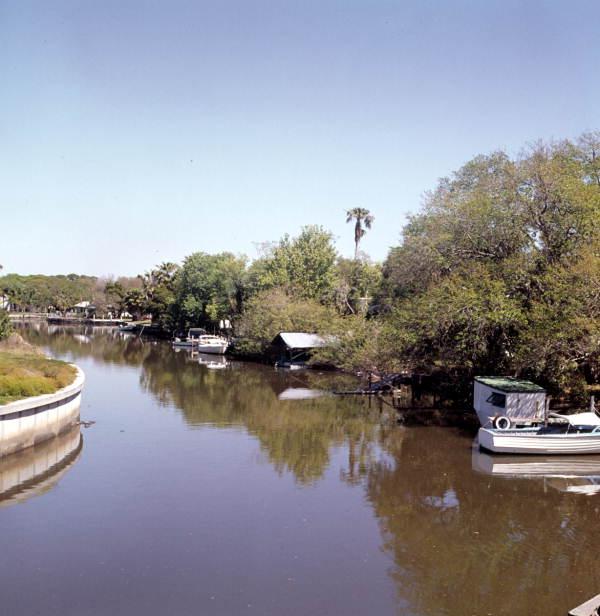 Whitaker Bayou scene in Sarasota.