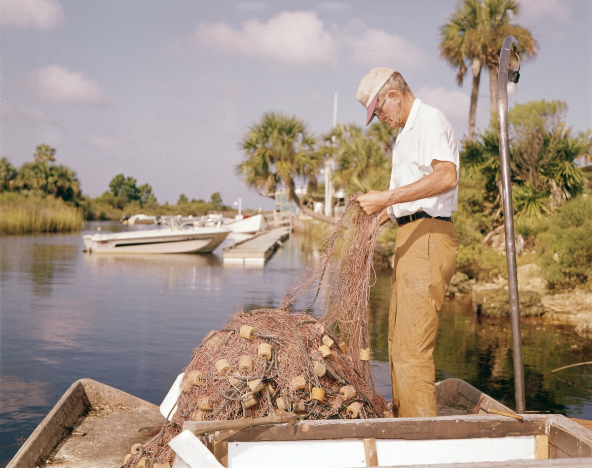 Fisherman preparing his casting net for a day of fishing on the Steinhatchee River in Taylor County.