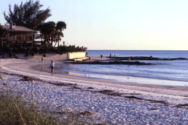 Beach scene in Sarasota.