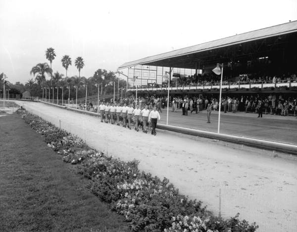 Grooms lead dogs out on the track - Tampa, Florida .