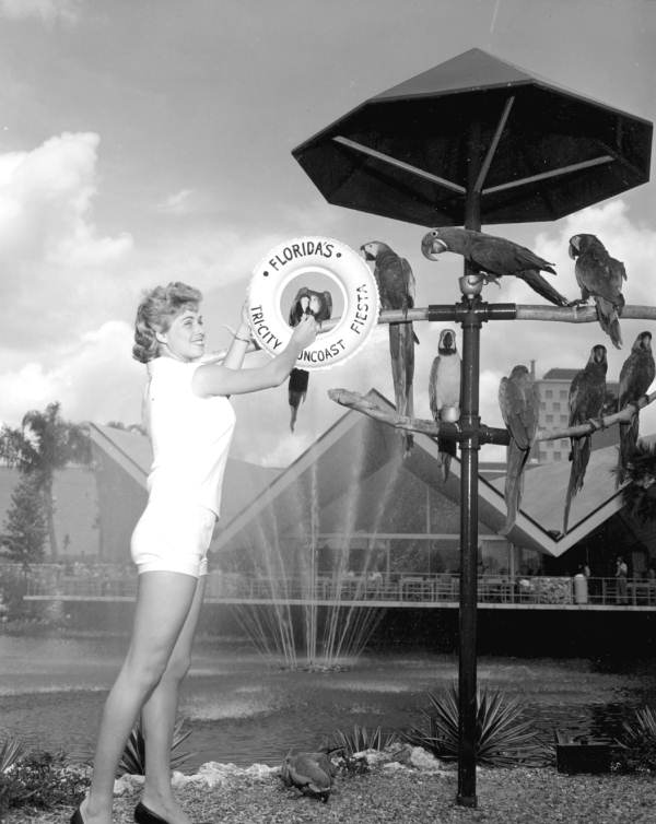 Norma Lado feeds birds at Busch Gardens at the Tri-city Suncoast Fiesta - Tampa, Florida.
