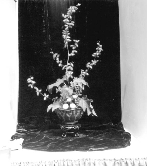 Ribbon winning floral arrangement at the North Florida Fair - Tallahassee, Florida