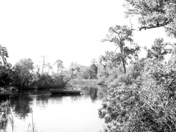View of Little Manatee River - Hillsborough County, Florida .