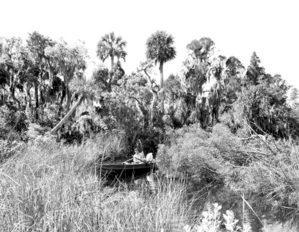 A fisherman fishing in the headwaters of the Little Manatee River - Hillsborough County, Florida.