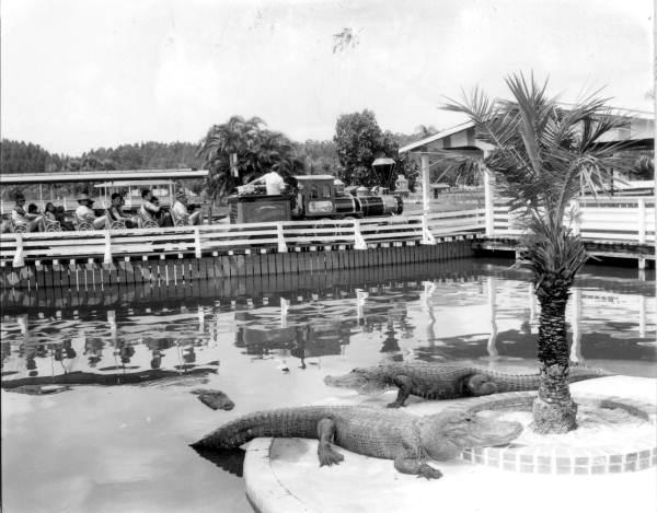 Tourists on train at the Gatorland theme park - Orlando, Florida.