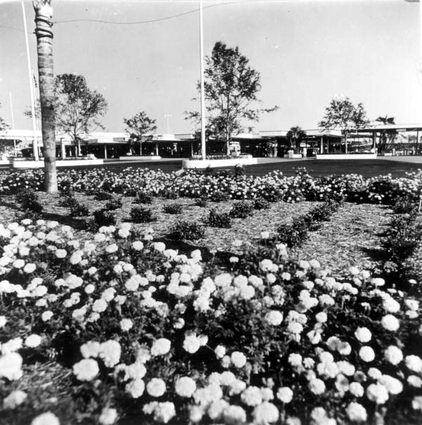 View of flower beds at the Magic Kingdom - Orlando, Florida.