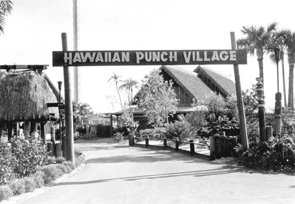 Hawaiian punch village of Sea World - Orlando, Florida.