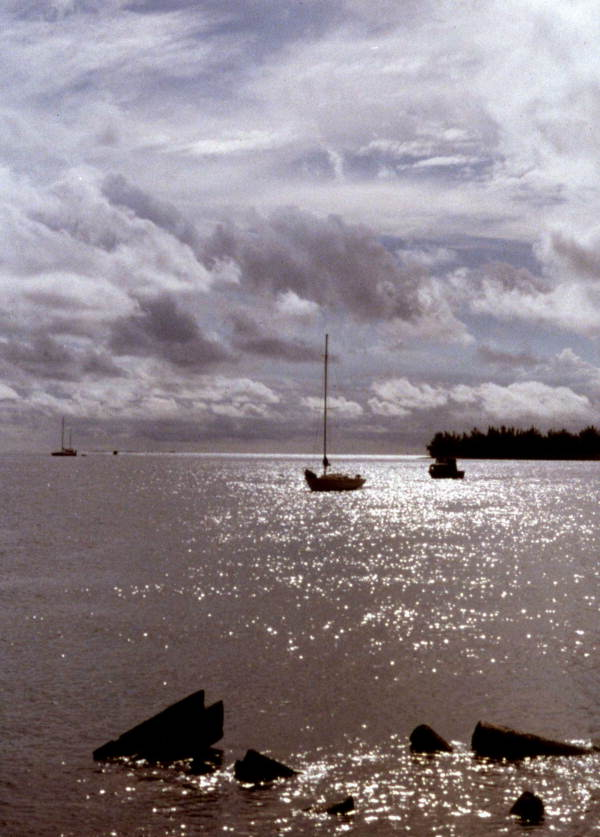View showing boats anchored in Key West, Florida.