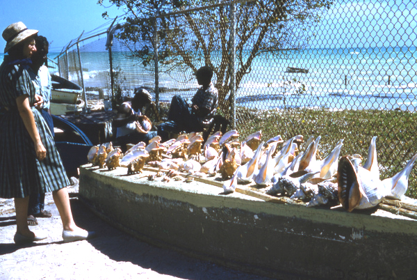 Shells for sale at the Southernmost Point in Key West.