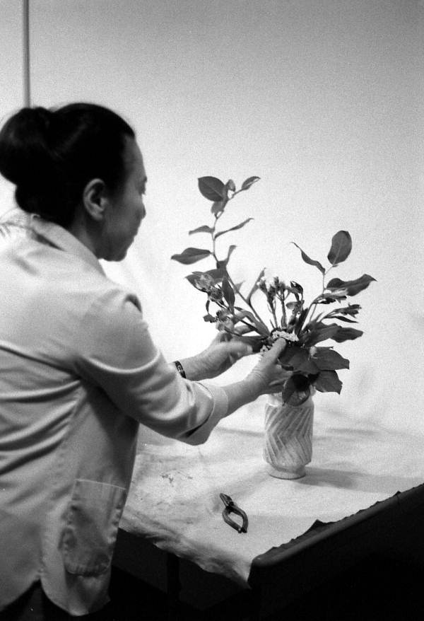 Atsuko Lefcourte making a Ike bana floral arrangement- Lake Park, Florida.