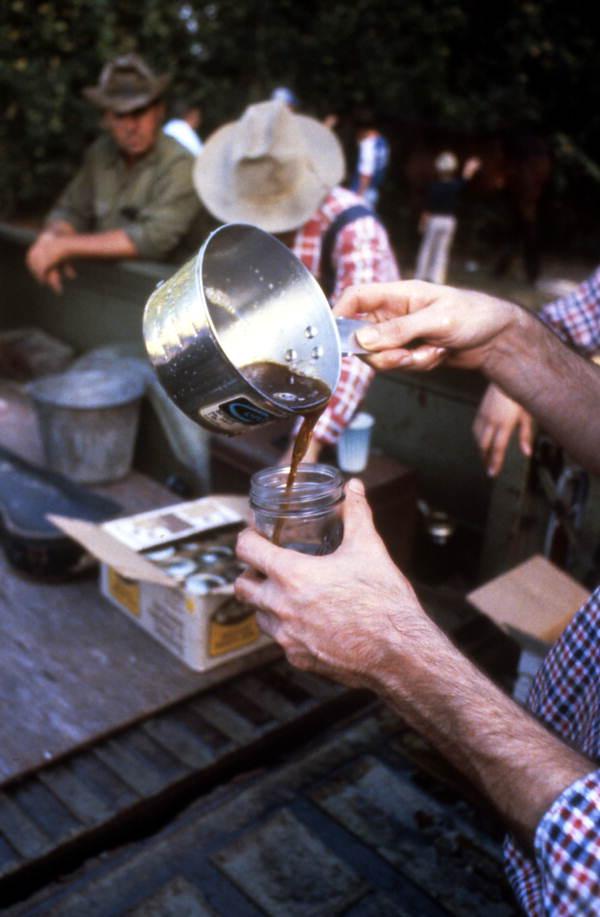 Pouring sugar cane syrup into a jar - Orlando, Florida.