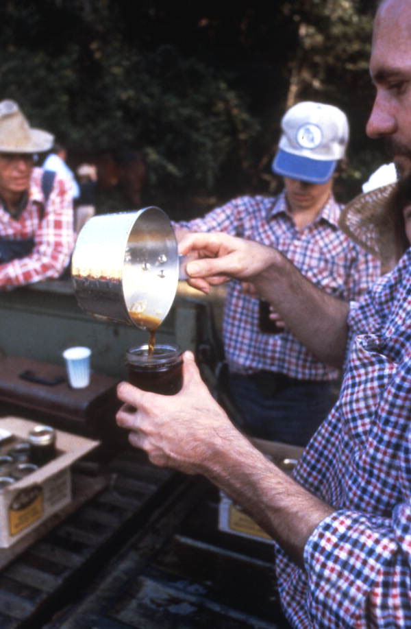 Pouring sugar cane syrup into a jar - Orlando, Florida.