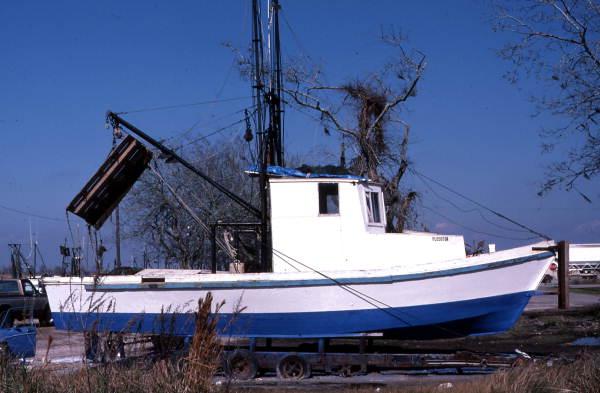 Bay shrimp boat at Mill Pond : Apalachicola, Florida.