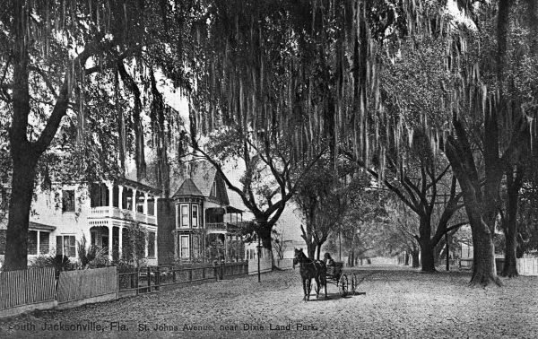 Saint Johns Avenue near Dixie Land Park - Jacksonville, Fla..