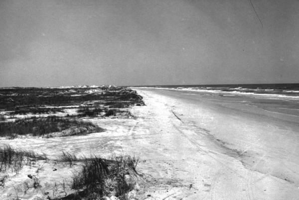 View from a high dune - Bird Island (Saint Augustine Beach), Florida.