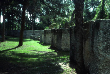 View showing tabby slave cabin remains at Kingsley Plantation State Historic Site : Fort George Island, Florida. (1977)
