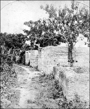 Remains of slave quarters at the Kingsley Plantation : Fort George Island, Florida (c. 1873)
