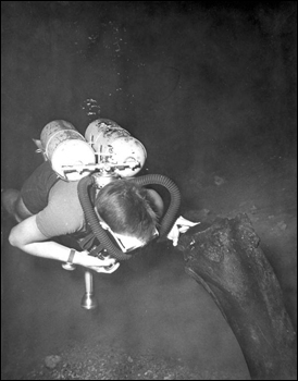 Scuba diver recovering mastodon bone from Wakulla Springs (195-)