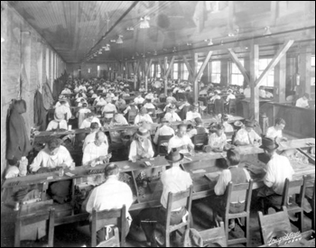 Interior view of a cigar factory: Tampa, Florida (19--)
