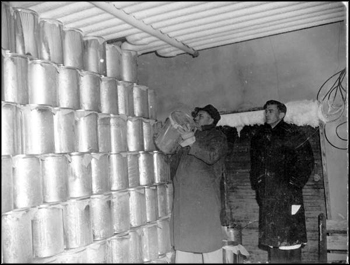 Frozen citrus concentrates in cold storage: Haines City, Florida (1946)