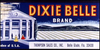 Thompson Sales Company's Dixie Belle Brand citrus label (1986)