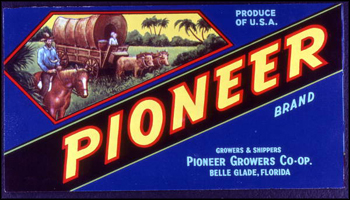 Pioneer Growers Cooperative's Pioneer Brand citrus label (1986)
