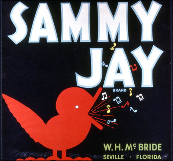 W.H. McBride's Sammy Jay Brand citrus label (1986)