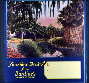 Sunshine Fruits from Burdine's citrus label (1986)