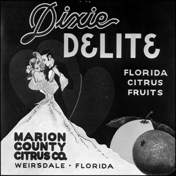 Dixie Delite citrus label: Weirsdale, Florida (early 1900s)