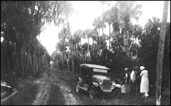 Tourists picking oranges in a roadside grove (ca. 1910s)
