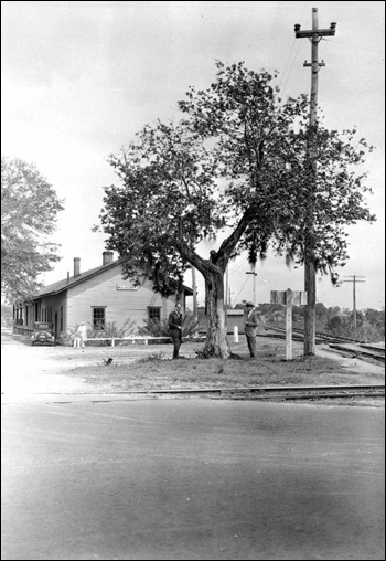 G. Ponton and H. Gunter standing beneath mulberry tree: Mulberry, Florida (March 12, 1929)