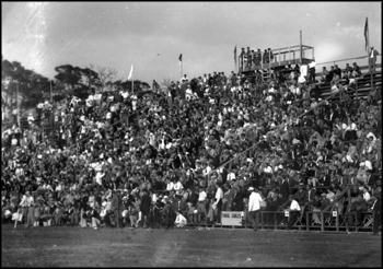 Fans at a University of Miami football game: Miami, Florida (ca. 1920s)