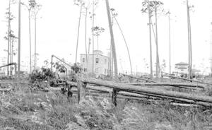 Riviera section after the 1926 hurricane : Coral Gables, Florida