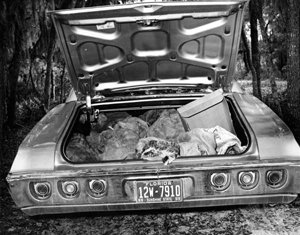 Confiscated car filled with illegally hunted alligator skins (1969)