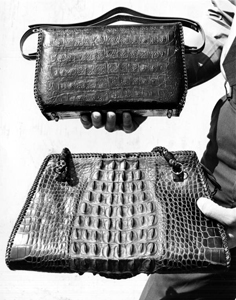 Handbags made from alligator skins (1960s)