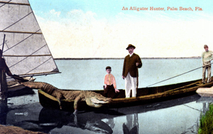 An Alligator hunter: Palm Beach, Florida (19--?)